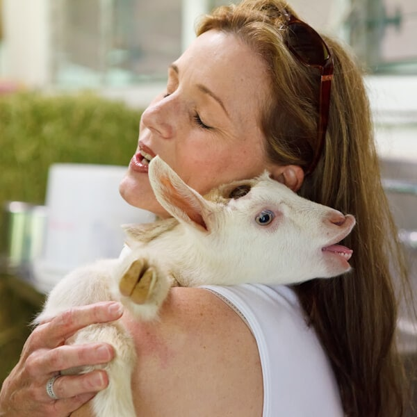 Goat dairy | AFoodCentricLife.com