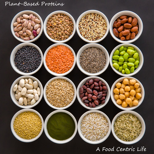 image of plant-based proteins