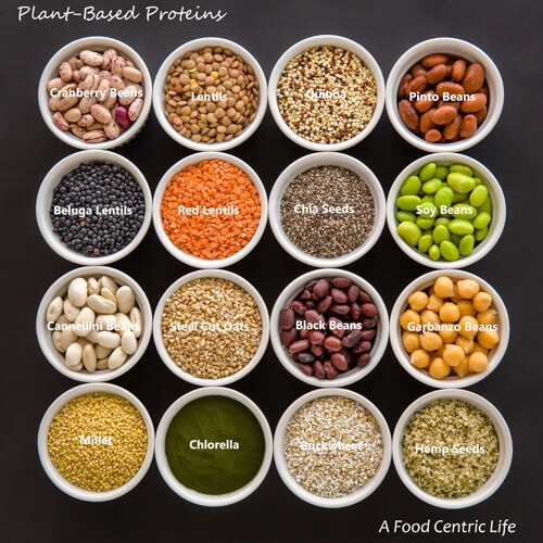 Guide to Plant-Based Protein Part 2 - A Food Centric Life