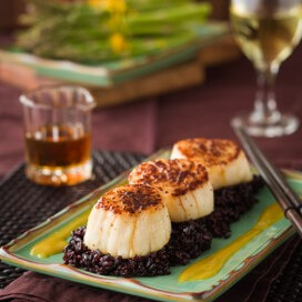 Seared Scallop with Orange Miso Sauce
