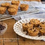 Chocolate Chip Granola Bites | AFoodCentricLife.com