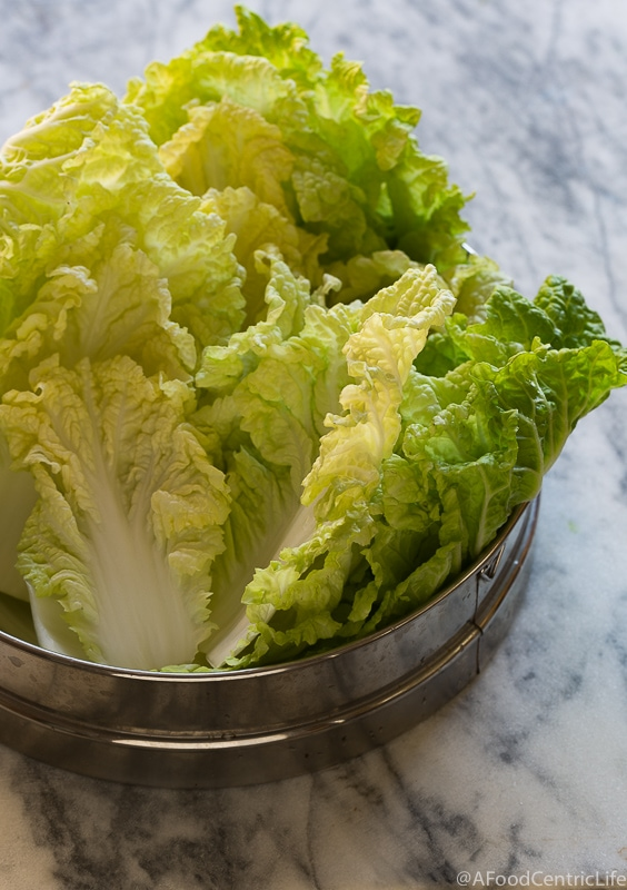Napa Cabbage | Afoodcentriclife